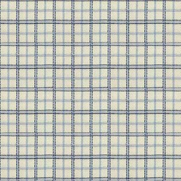 Double Blue White Checkered