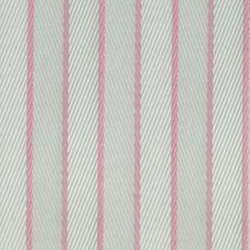 Bold Pink Lines