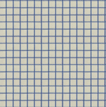 Blue White Checkered